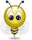 Аватар пользователя Начинающий в КДП