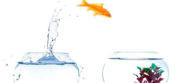 Увольнения топ-менеджеров: пять уроков