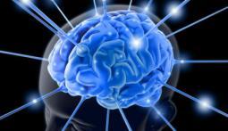 Что на самом деле означает IQ?