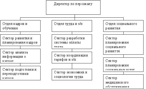 организациях отделы кадров