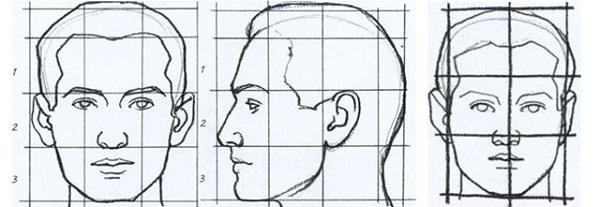 Эталон головы человека