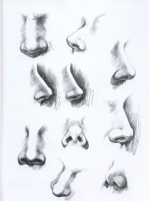 Как правильно рисовать нос