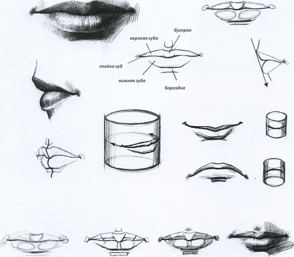 Как научиться рисовать губы