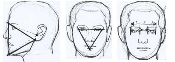 Как научиться рисовать голову человека