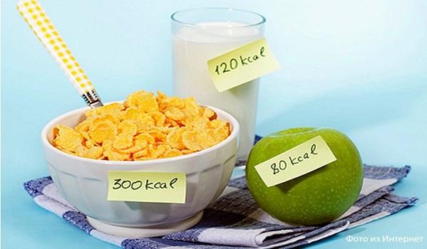 как научиться считать калории чтобы похудеть девушке