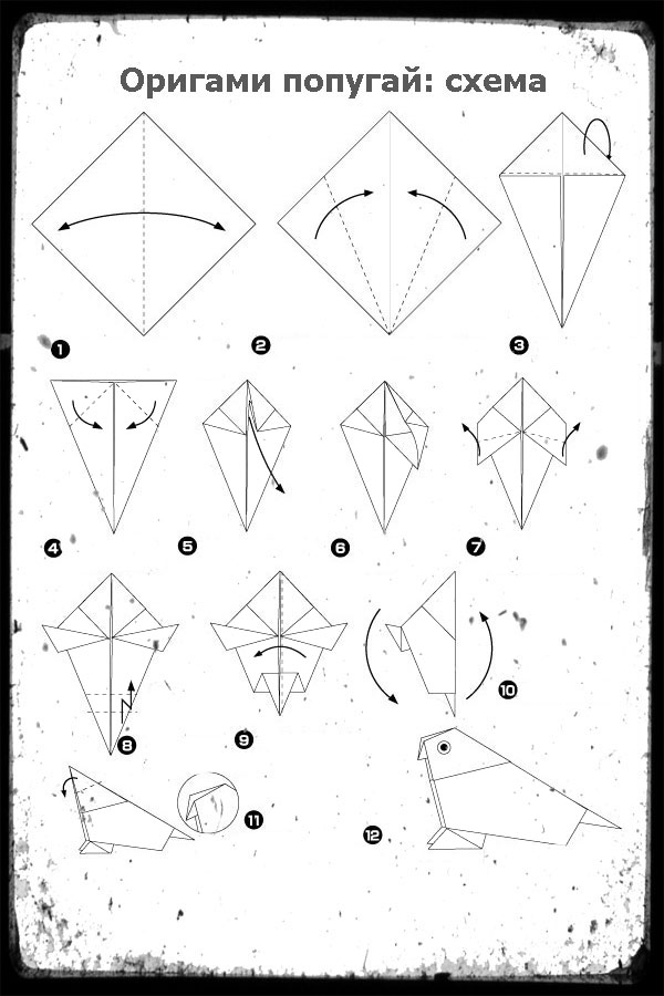 Схема сборки попугая из бумаги